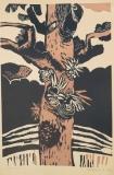 Seiba, 1977, linořez, autorský tisk 70x35 cm, volný list, 1.200 Kč