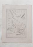 František Tichý, Marie Jančaříková - ex libris, 1993 suchá jehla 9x12,5 cm ruční papír nesignováno cena 7.800,- Kč