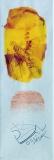 Zpráva z Merkuru, malba na papíře 6x18 cm, rozměr rámu 20x35 cm, signováno, cena 700,- Kč